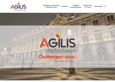 Agilis Performance